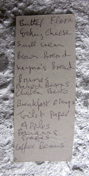 Lost shopping list